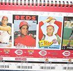 2010 Reds tickets