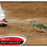 Topps Rally Squirrel