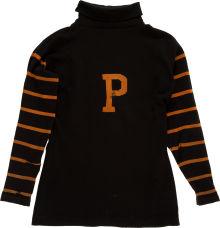 Princeton football jersey 1895