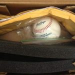 Baseball intended for Dalai Lama to sign