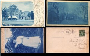 Cyanotype postcards with the signature bright blue images