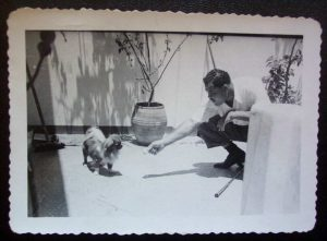 1940s small snapshot of boxer Joe Louis trying to be friends with a tiny South American dog. This was photographed by Louis' trainer Mannie Seamon and kept for decades in Seamon's personal photo album. Amateur's snapshots of famous people rarely fetch high prices due to their diminutiveness, typically unprofessional images and the popular assumption that they are common. I've long been a lonesome fan (and avid buyer) of quality celebrity snapshot collections because of the candid, personal and unusual images.