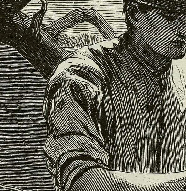 An even better look at the typical lines in an 1800s wood-engraving