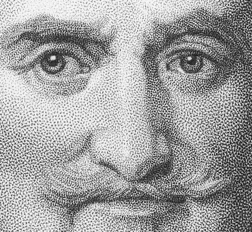 The dots in stipple engraving, intended to give shading and tone