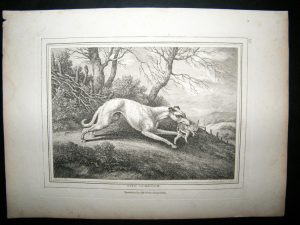 When you look closely you can see the pressed in 'plate mark' surrounding the graphics on this 1812 etching.