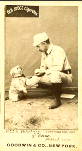 N172 Old Judge Art Whitney with Dog