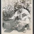 San Francisco Seals Joe DiMaggio Day 1935