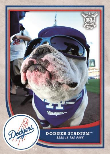 dog baseball card 2018